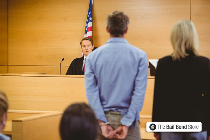 Types of Pleas a Defendant can Enter for Court | Los Angeles